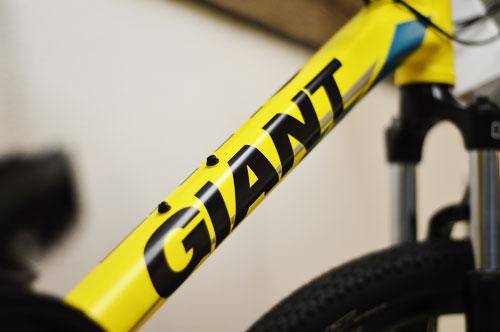 Giant-Frame